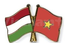 Vietnam, Hungary boost economic cooperation
