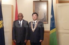 Solomon wishes to boost multi-faceted cooperation with VN