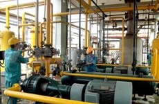 VN industrial growth slows to just 4.8 percent