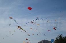 Vietnam Kite Festival opens in Vung Tau