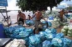 Vietnam, Cambodia strengthen cross border trade