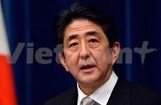 Japanese PM's Vietnam visit deepens strategic partnership
