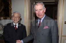 Vietnam values ties with UK