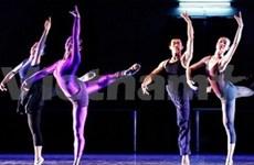 Vietnamese, German dancers to whirl in Hanoi