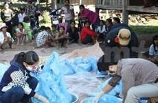 Vietnam, Cambodia coordinate to prevent malaria