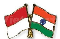 Indonesia, India boost South – South cooperation