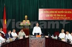 Gia Lai urged to work harder to reduce poverty