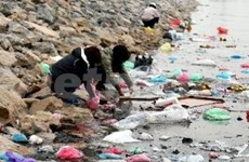Vietnam aims to reduce plastic bags by 65 percent
