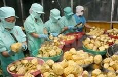 Vietnam resumes export of fruit, vegetables to EU