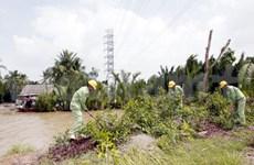 Alarm raised over power line security