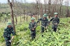 Vietnam seeks int'l support to clear bombs, mines