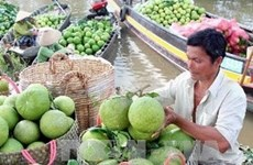 Vietnamese products seek foothold in world market