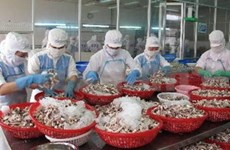 Vietnam targets 100 mln USD in exports to Mozambique