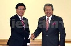 Foreign Minister Minh continues bilateral talks