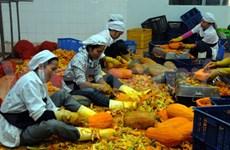 Fruit and veg export enjoys fertile growth