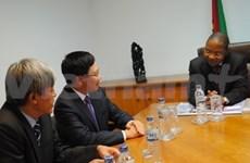 Vietnam, Mozambique focus on economic ties