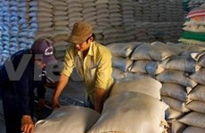 Long-term strategy needed for Vietnamese rice