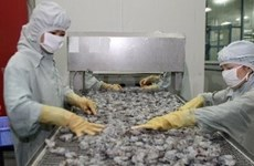 US imposes import duty on Vietnamese shrimp