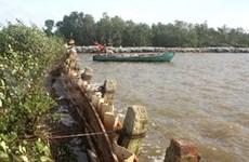 Climate change in Mekong Delta region in spotlight