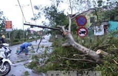 Typhoon Wutip claims three lives in central region