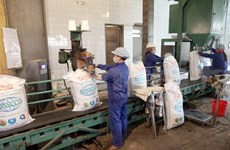 Sugar industry to increase exports