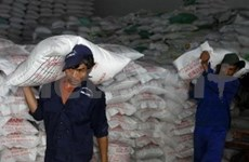 Over one million tonnes of rice for export next year