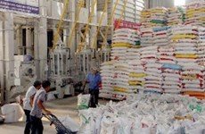 Long An: Rice production sees new high record