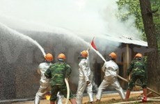 ASEAN states join field disaster response drill in Hanoi