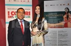 Fine arts display opens Vietnamese days in Milan