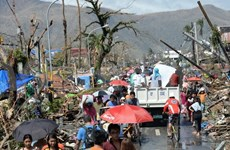 Efforts made to help Vietnamese citizens in Philippines