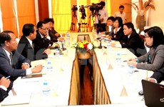 Vietnamese, Lao news agencies set tasks for next year