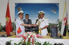 Vietnam, Brunei navies establish hotline