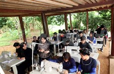 Vietnam promotes gender equality, women's rights
