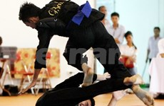 Pencak silat brings Vietnam more gold medals