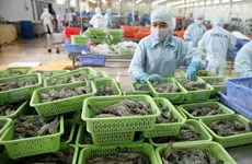Shrimp exports could hit 3 bln USD for first time