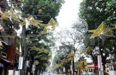 Hanoi invests big in public lighting system
