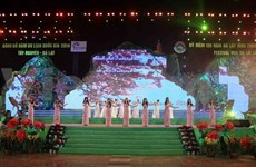 Da Lat tourism week greets over 200,000 visitors