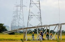 EVN subsidiary to up electricity supply in 2014