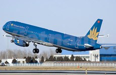 Vietnam Airlines adds more domestic flights for Tet