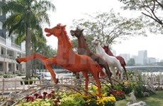 Ho Chi Minh City spring show highlights delta features