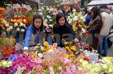 Hanoi: Quang An flower market, a special treat