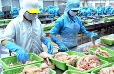 US farm bill causes difficulties for Vietnamese Pangasius