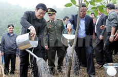 President launches tree-planting festival in Thanh Hoa