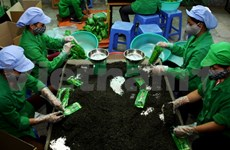 Tea farmers celebrate their trade in spring festival