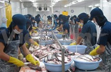 Vietnam needs to restructure tra fish sector