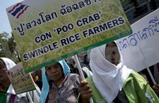 Thai PM pledges to pay rice debts