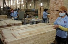 Bright prospects for woodworking industry: expert