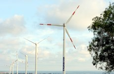 Wind power boost needs policy support: experts