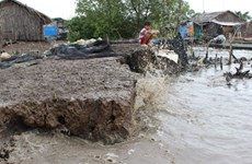 Erosion threatens homes in Mekong Delta