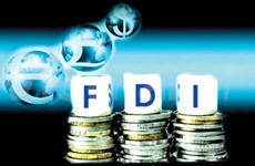 FDI enterprises granted too many advantages: economist